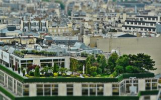 Reasons For The Popularity Of Green Building Trends