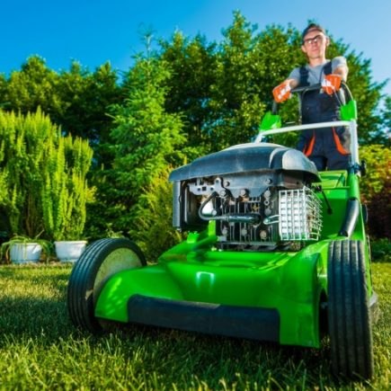 What's a Normal Rate for Lawn Care?