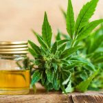 CBD OIL : THE BEST REMEDY TO MIGRAINES
