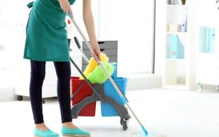 Image result for House Cleaning Services