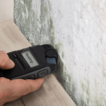 What is The Difference Between Mold Inspection & Testing!