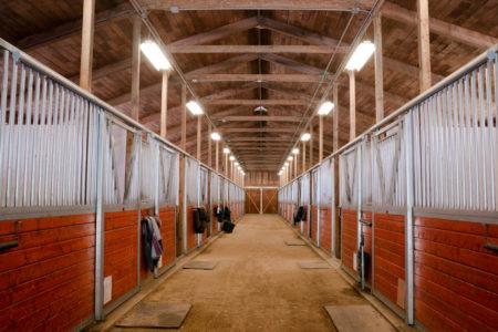 equine sheds