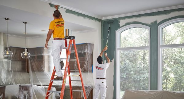 professional painters work