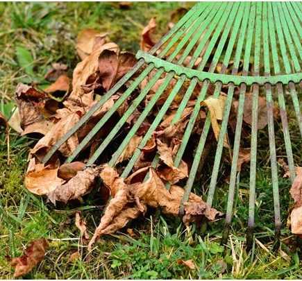 Your Essential Spring Home Maintenance Checklist